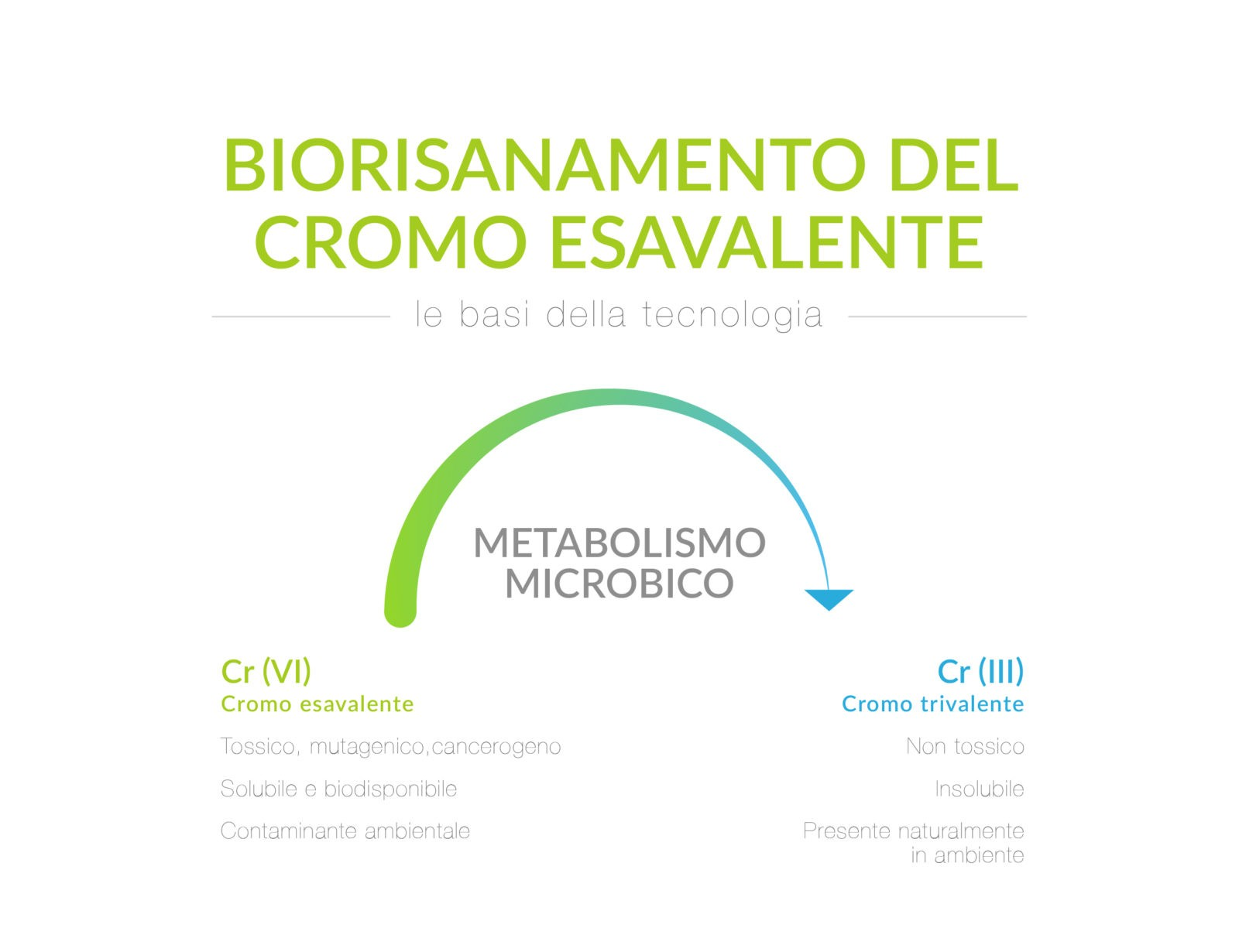 Biorisanamento Cromo esavalente