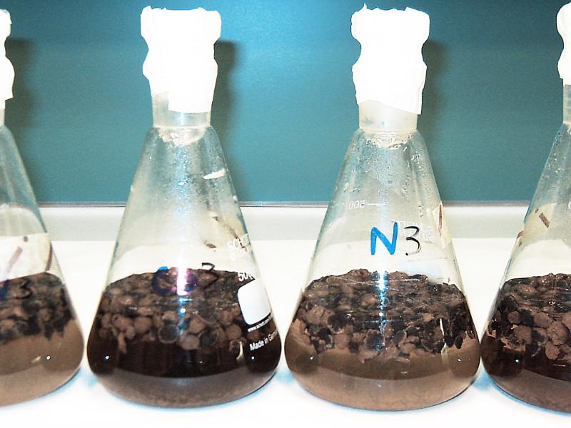 Test biotrattabilità