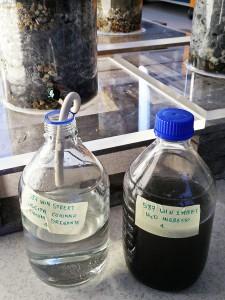 Biofiltrazione acqua prima pioggia