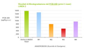 Biorisanamento PCB 209