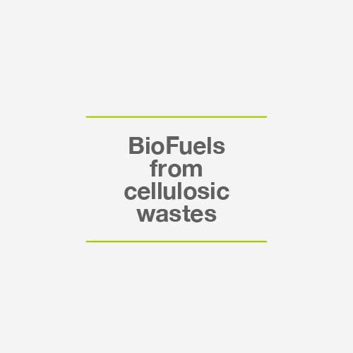 Biofuels from cellulosic wastes