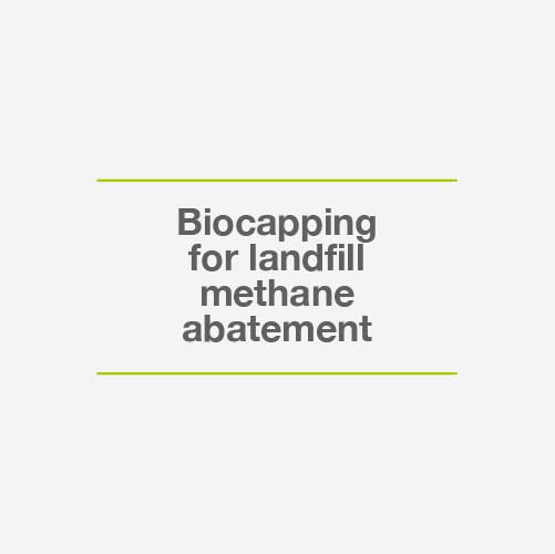 Biocapping for methane abatement
